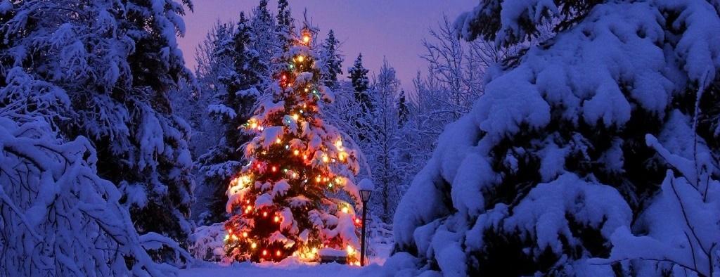 Arbol_de_Navidad_Iluminado